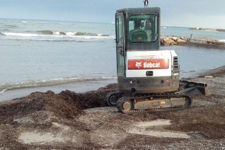 Foto ruspa in azione per la rimozione della posidonia dalle spiagge