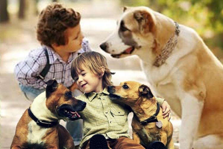 foto di bambini con cani