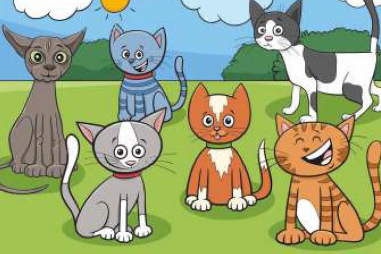 disegno di gatti