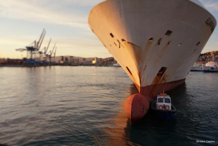 porto (foto generica tratta dal sito Autorità di Sistema Portuale del Mar Tirreno Settentrionale)