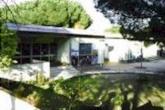 scuola secondaria di 1? grado N.Pistellli: esterno